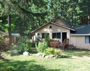 217 Crescent Beach Dr, Packwood image