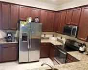 10298 Via Colomba CIR, Fort Myers image