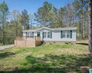 250 Cherrywood Ln, Odenville image