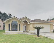1456 Woodfield Oaks Drive, Apopka image