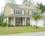 501 Oak Pond Ct., Conway image