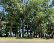 5010 Bucks Bluff Dr., North Myrtle Beach image
