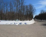 11333 Berry Creek Valley Rd, #31, Petoskey image