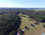 Kelly Ranch Rd Unit 39 Acres, Talladega image