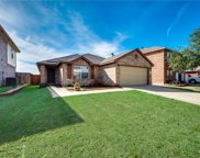 4116 Fossile Butte Drive, Fort Worth image