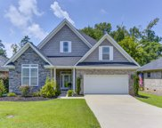 312 Fairway Pond Court, Chapin image