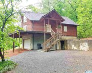 583 Tanglewood Lane, Scottsboro image