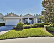 20796 Castle Pines CT, North Fort Myers image