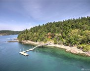 55 56 Brown Island, Friday Harbor image
