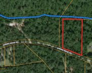 TBD (Tract 115) Spring Ridge Road, Coldspring image