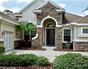 11911 Meridian Point Drive, Tampa image