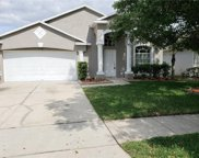 7344 Spandrell Drive, Wesley Chapel image