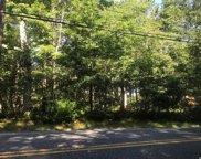 Silas Carter Rd, Manorville image