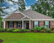 1008 Limpkin Dr., Conway image