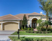 17233 Emerald Chase Drive, Tampa image