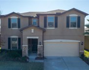 9209 European Olive Way, Riverview image