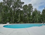 1105 Downing Bluff Drive, Simpsonville image