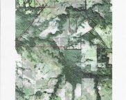 TBD Hwy 69, Lone Oak image