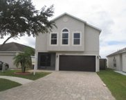 13625 Silver Charm Court, Riverview image