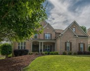 16813  Turtle Point Road, Charlotte image