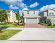 3134 Armstrong Spring Drive, Kissimmee image
