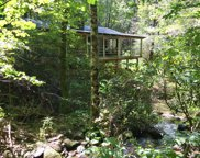 1082 Old Bald River Rd, Tellico Plains image