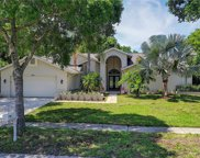 3985 Belmoor Drive, Palm Harbor image