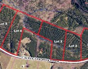 Lot 3 Henry Knob  Road Unit #3, Clover image