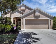 14127 Cattle Egret Place, Lakewood Ranch image