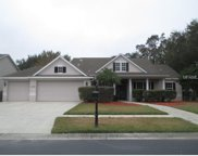 502 Crowned Eagle Court, Valrico image