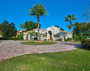 9727 English Pine Court, Windermere image