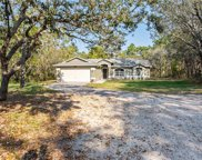 18809 Sugarberry Lane, Spring Hill image