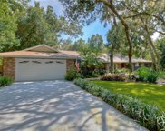 2735 Saint Cloud Oaks Drive, Valrico image