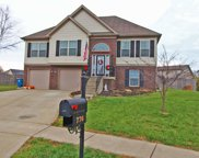 776 Friesian Ct, Shelbyville image