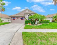 10515 Goldwater Lane, Riverview image