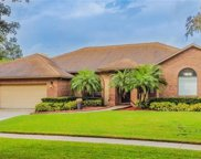 2849 Timber Knoll Drive, Valrico image