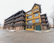 450 N Main Street Unit #S301A, Wauconda image