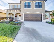 14298 Saltby Place, Spring Hill image