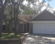 204 Old Oak Point, Casselberry image