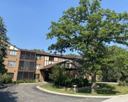 7800 West Foresthill Lane Unit 202B, Palos Heights image
