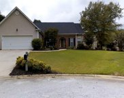 509 Wingcup Way, Simpsonville image