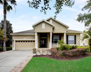 11910 Camden Park Drive, Windermere image
