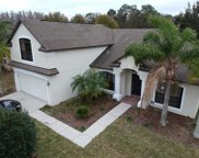 15228 Princewood Lane, Land O Lakes image