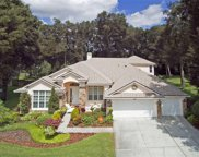 589 Sand Wedge Loop, Apopka image