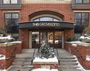 317 Groveland Avenue Unit #616, Minneapolis image