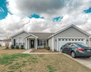 2904 Green Pond Circle, Conway image