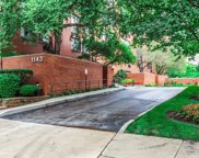 1143 South Plymouth Court Unit 403, Chicago image