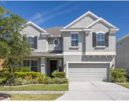 19305 Water Maple Drive, Tampa image