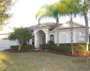 17367 Emerald Chase Drive, Tampa image