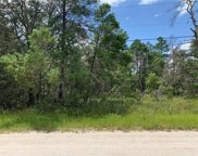 Pine View Trail, Kissimmee image